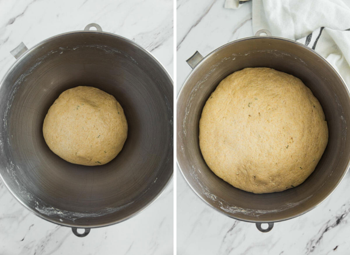 Whole wheat dough in a mixing bowl. Before and after proofing dough.